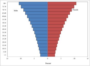 population pyramid example